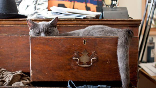 riparare cassetto