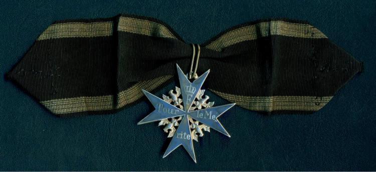 web pagePLM ribbon 12-5-11